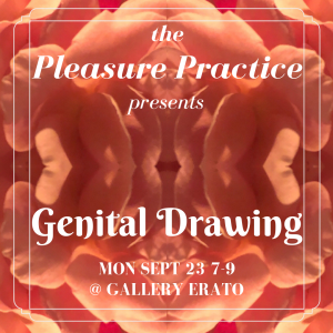The Pleasure Practice: Genital Drawing @ Gallery Erato