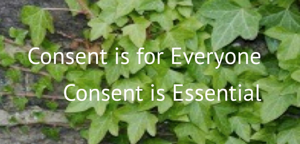 [Consent Academy] Transformative Accountability Part 1 @ online via Zoom